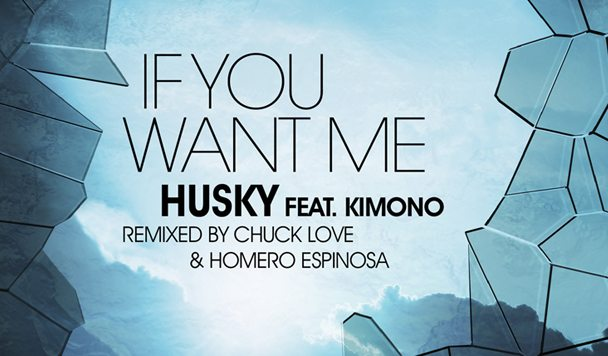 Husky - If You Want Me (ft. Kimono) (The Remixes) [Premiere] - acid stag