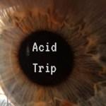 Thorne - Acid Trip [New Single] - acid stag