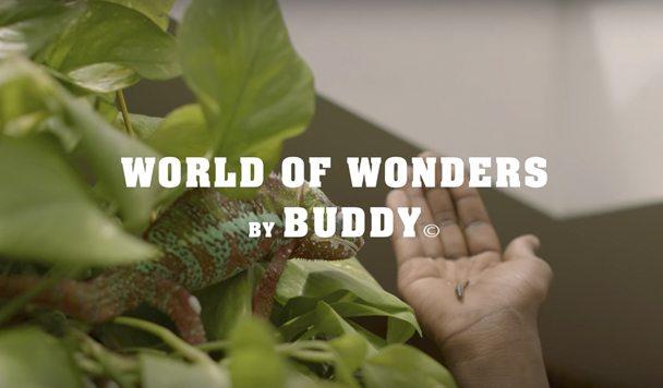 Buddy – 'World of Wonders' [Music Video]