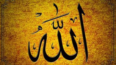 Bild von Ich, islamophob