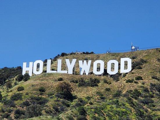 Hollywood 12 Haziran'da perdeyi açıyor