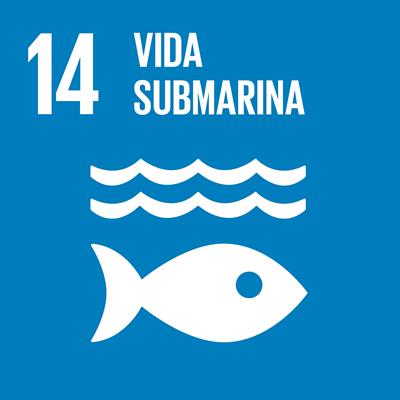ODS 14 - Vida submarina