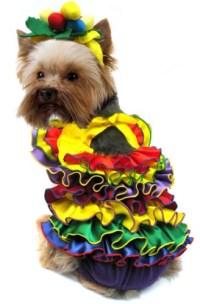 Dog Puppy Costume - Calypso Queen - BarkinWoofer