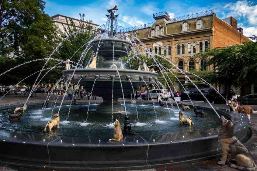 Dog Fountain at Berczy Park