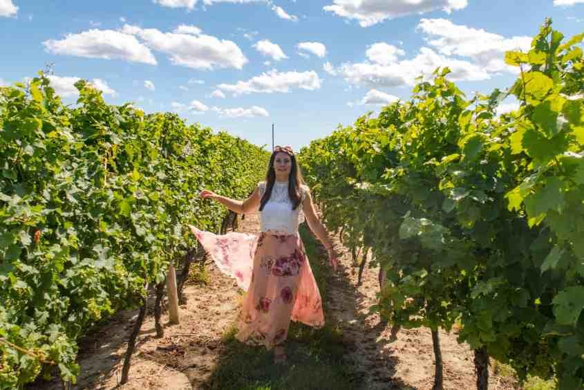 Trius Winery Vineyard Niagara On The Lake