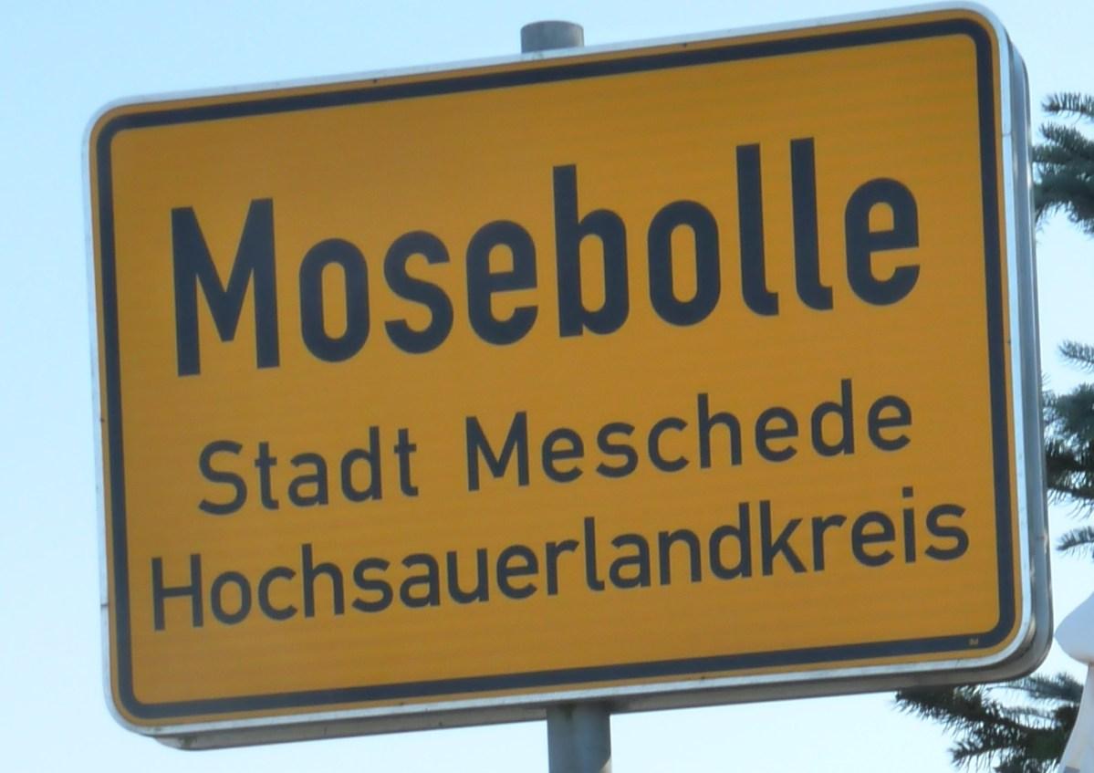 Warum Mosebolle?