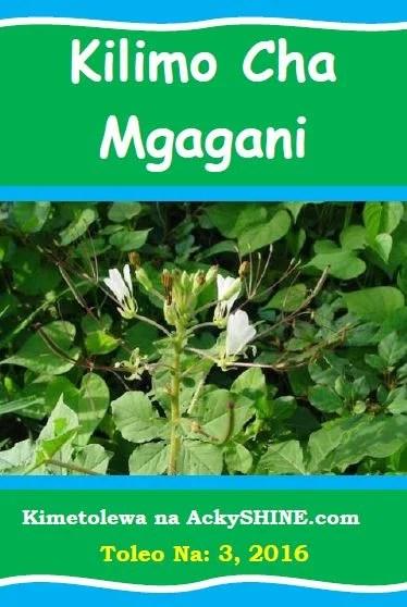 Kilimo cha Mgagani