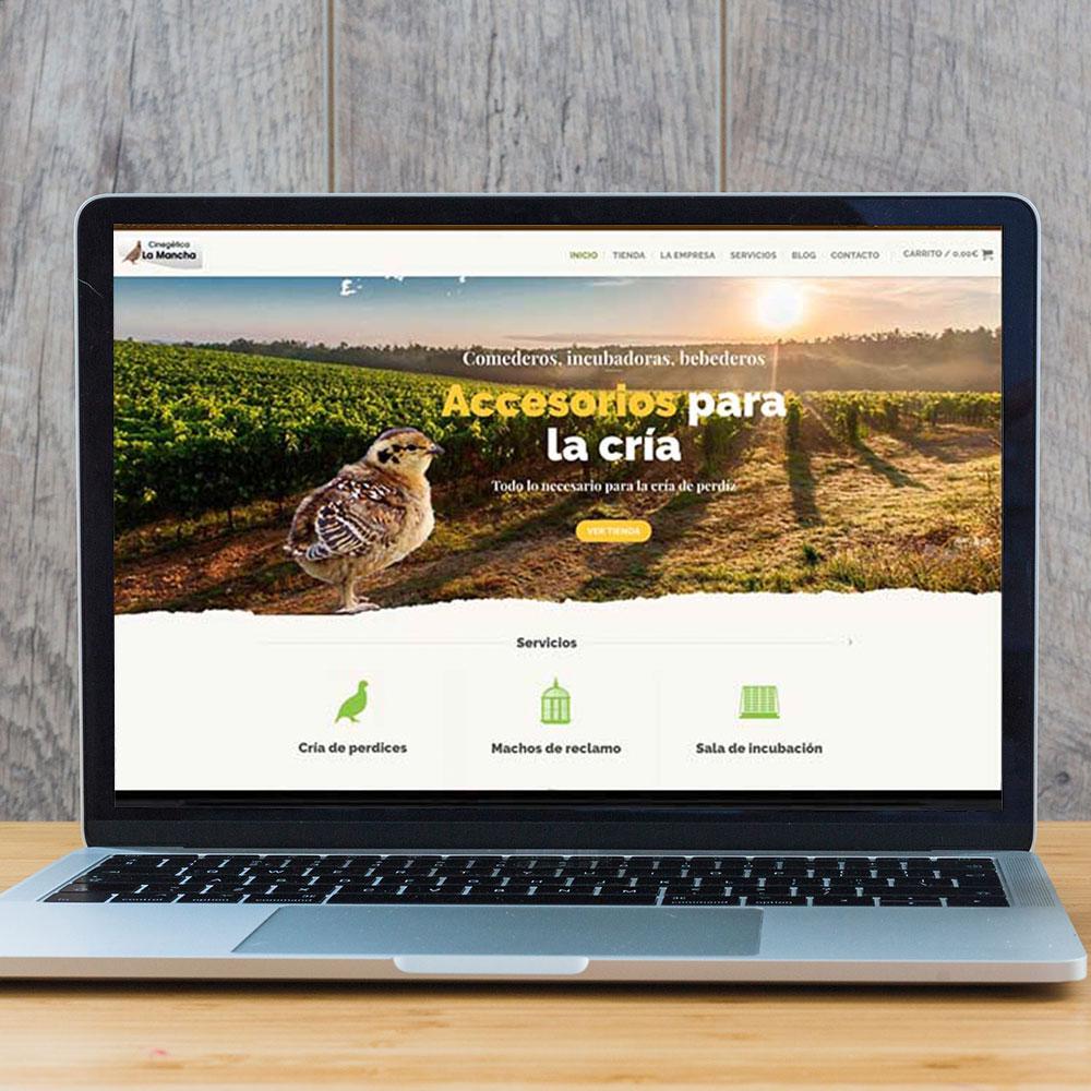 Diseño de comercio electrónico y web para la empresa Cinegética la Mancha. Estudio Aclararte.