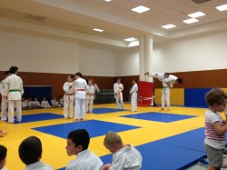 judo ACL 12