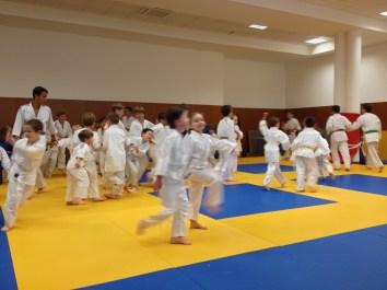 judo ACL 4