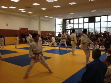judo ACL 5