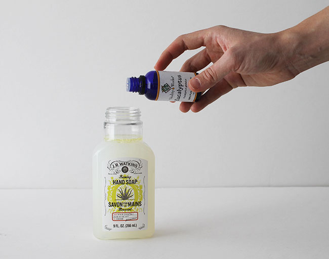 DIY Foaming Hand Soap - scented with all natural essential oil