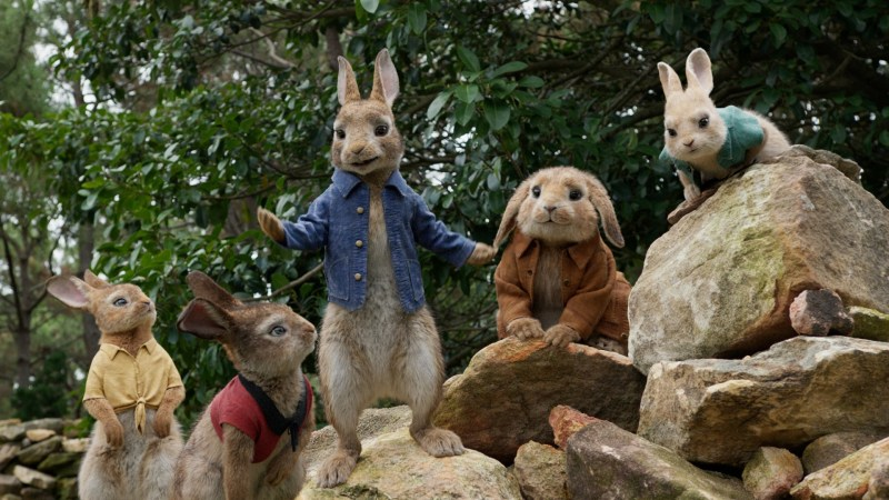 A scene from the film 'Peter Rabbit' - DOP Peter Menzies Jr. ACS