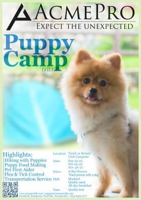 Puppy Camp (Eng)