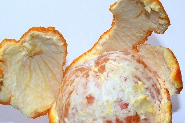 Orange peel for pastules