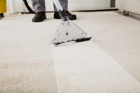 Get Your Hotel Carpets Steam Cleaned in Stoughton, MA ...