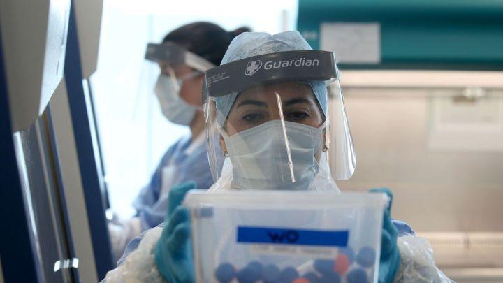Inglaterra: casos não diagnosticados podem indicar mais mortes