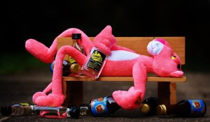 Drunk Pink Pather on a bench