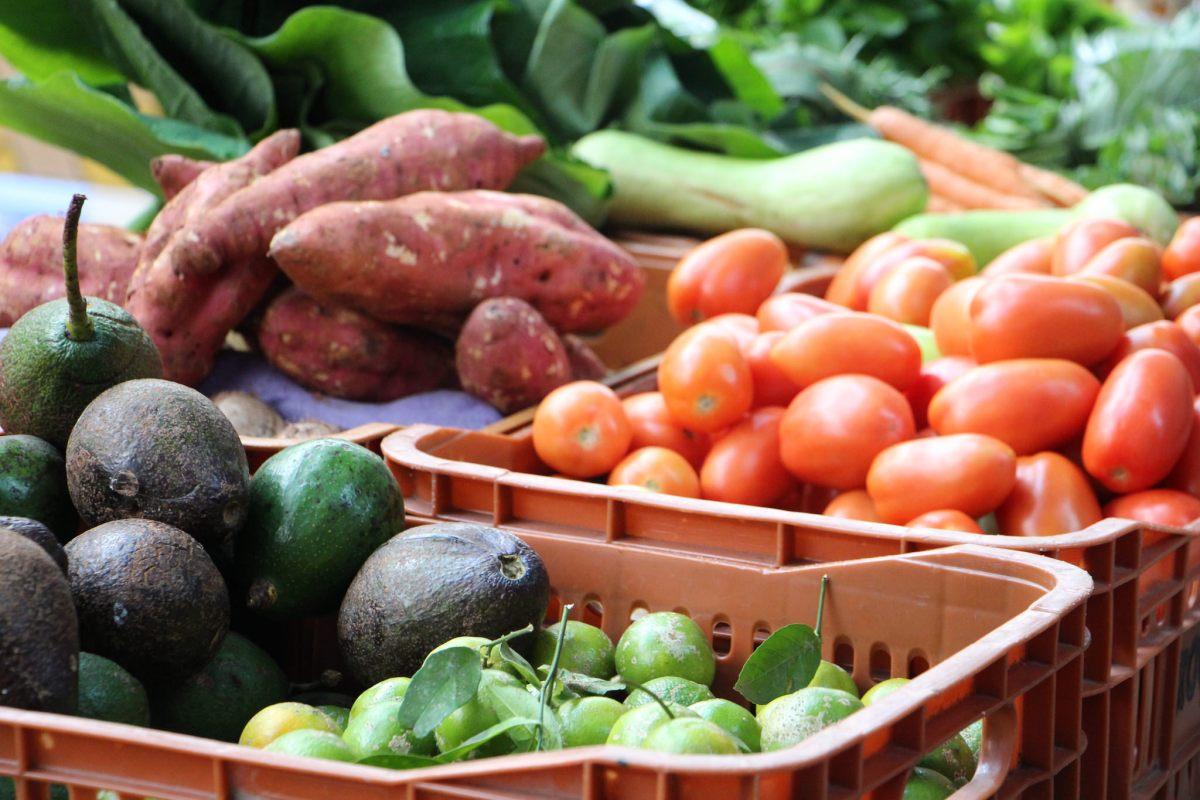 Sesc Jundiaí recebe 2ª edição do Experimenta! Comida, Saúde e Cultura