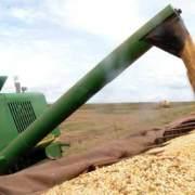 Foto de estocagem de grãos