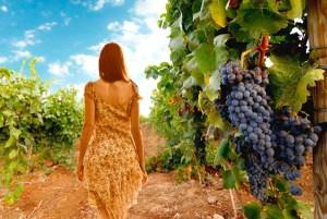 La muchacha y el viñedo. Poesía y vino