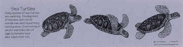 Sea Turtles Bookmark