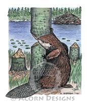 Beaver Lokta Card