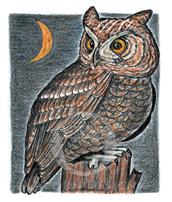 Screech Owl Lokta Card