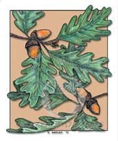 Oak Leaves Lokta Card