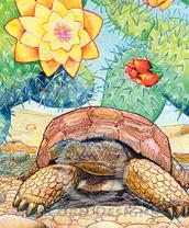 Desert Tortoise Lokta Card