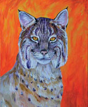 Solitary Bobcat Lokta Card