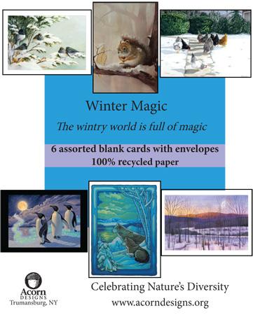 Winter Magic Assortment
