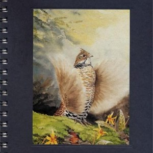Spring Awakening Journal