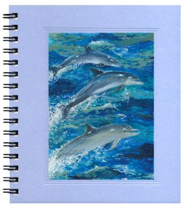 Bottlenosed Dolphins Notecard