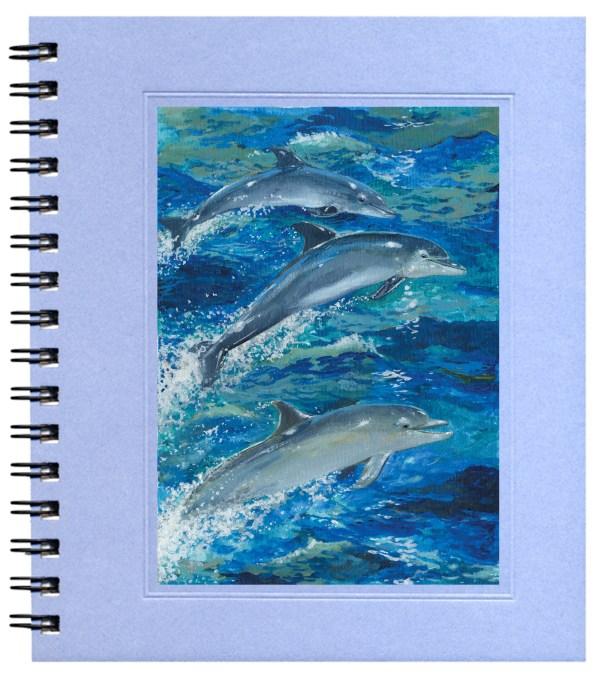 Bottlenosed Dolphins Notecard