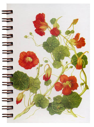 Cover image - Nasturtiums Mini Journal