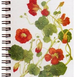 Cover image - Nasturtiums Mini Journal