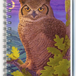 Cover image - Great Horned Owl Mini Journal