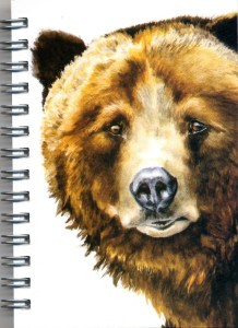 Cover image - Grizzly Bear Mini Journal