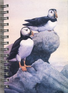 Cover image - Atlantic Puffin Mini Journal