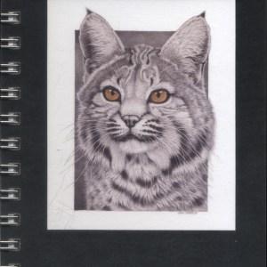 Cover image - Bobcat mini journal