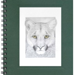 Mountain Lion Notecard
