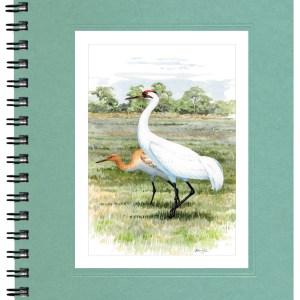 Whooping Cranes Notecard