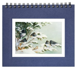 Juncos in Snow  Notecard