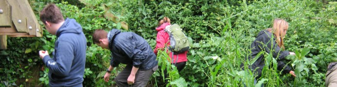 Ecology training, field courses, ecology courses