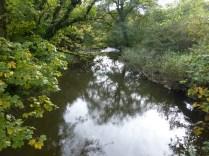 Tamar at Moretonmill bridge