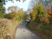 Near Newbridge