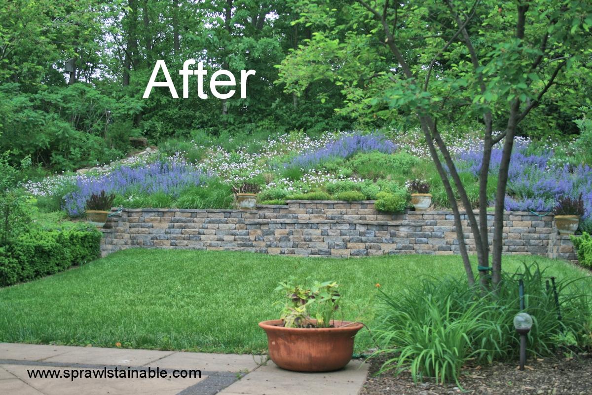 Backyard Hill Landscaping Ideas Sprawlstainable