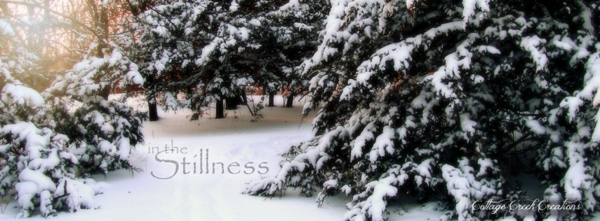 Snowy Path 2011 IN THE STILLNESS