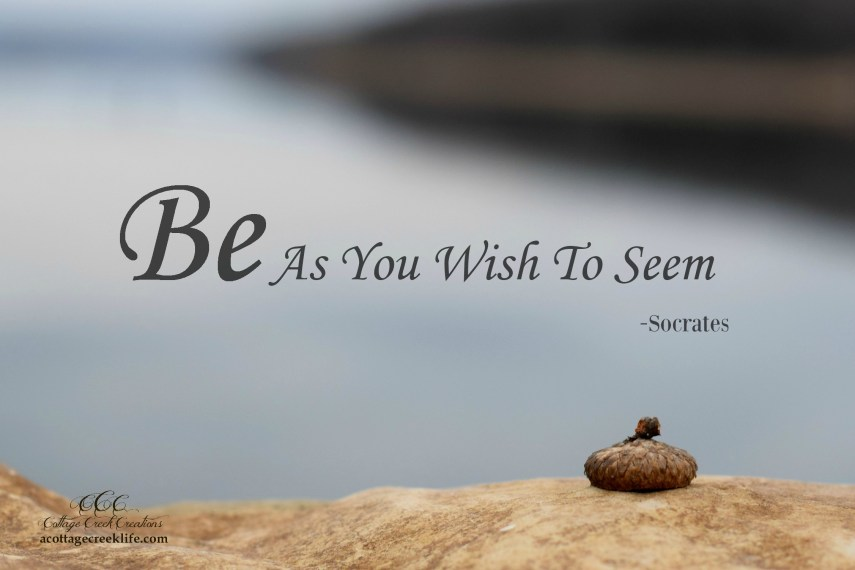 Be as you wish to seem